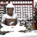 Yoga im Winter | Ayurveda Parkschlösschen Health Blog
