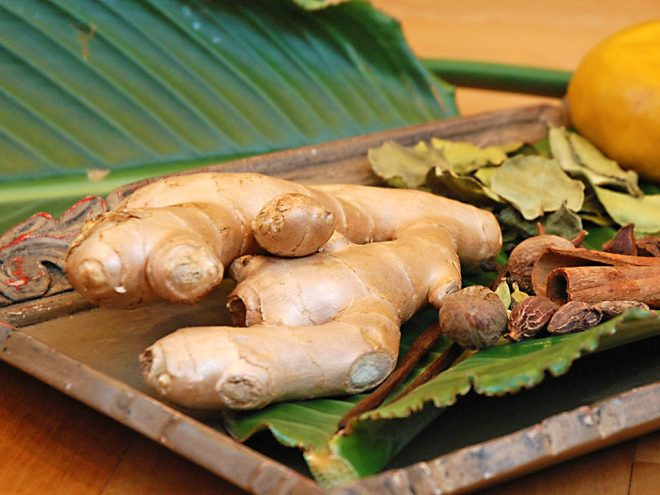 Ingwer-Honig-Paste bei Husten | Ayurveda Parkschlösschen Health Blog