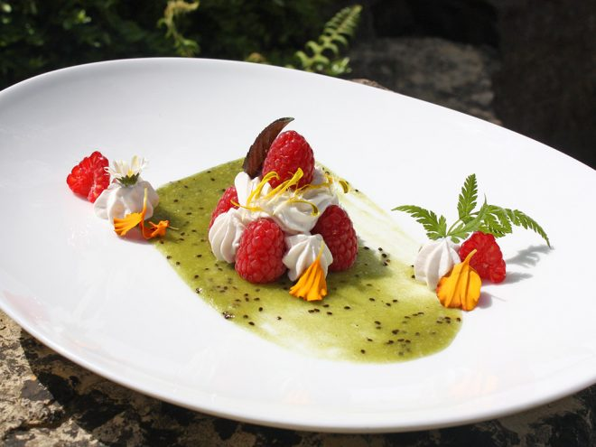 Ayurveda Rezept: Leichtes Dessert mit Himbeeren und Kiwi | Ayurveda Parkschlösschen Health Blog