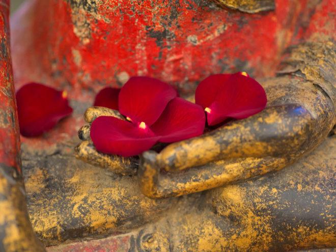 Zeit für mich selbst - Geführte Meditation mit Carina Preuß | Ayurveda Parkschlösschen Health Blog
